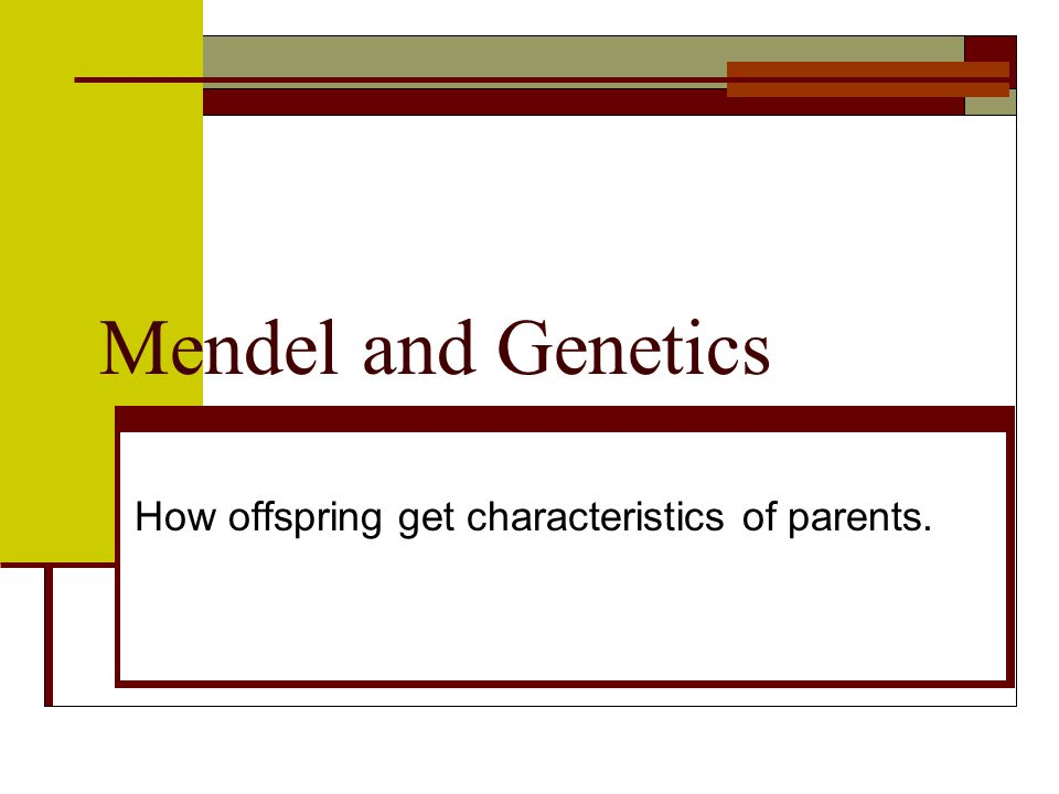 How offspring get characteristics of parents.
