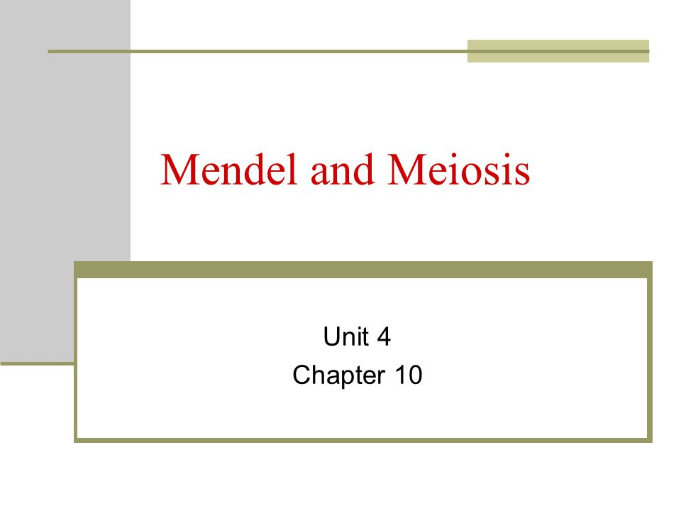 Mendel and Meiosis Unit 4 Chapter 10