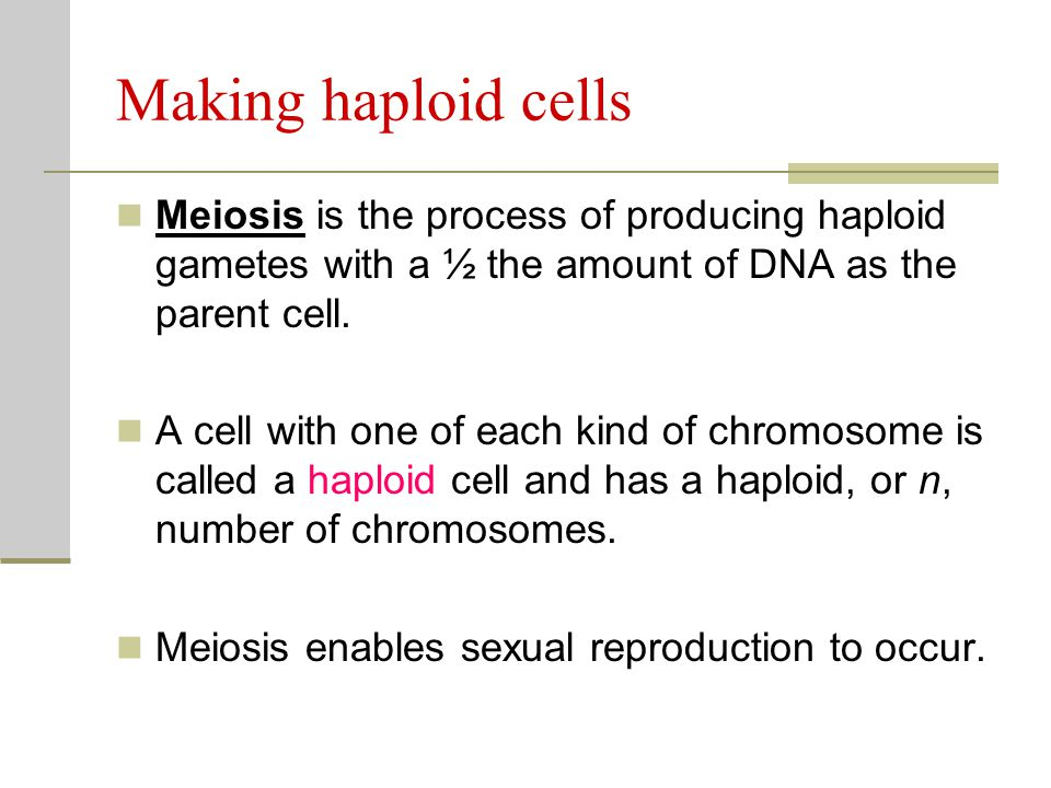 Making haploid cells Meiosis is the process of producing haploid gametes with a ½ the amount of DNA as the parent cell.