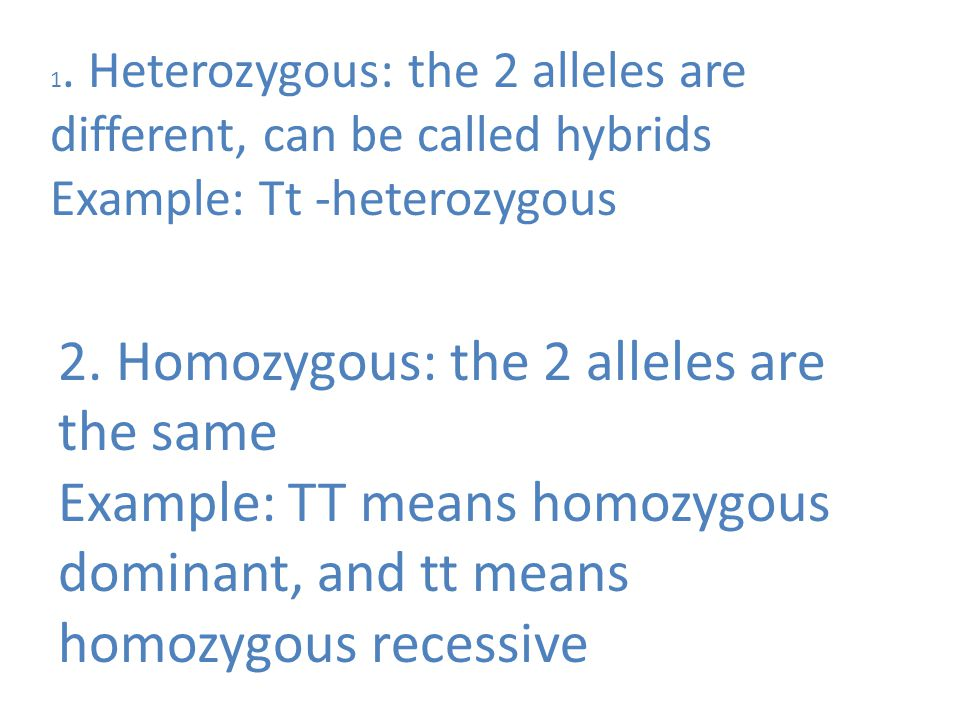 1. Heterozygous: the 2 alleles are different, can be called hybrids Example: Tt -heterozygous