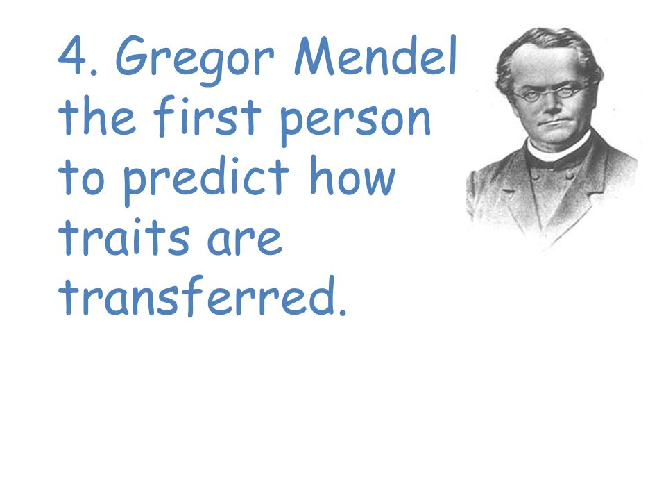 4. Gregor Mendel was the first person to predict how