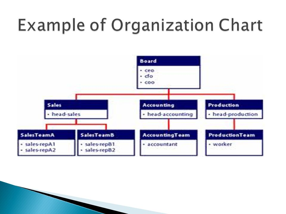 types of organizational structures Organizational structure types following are the types of organizational structures that can be observed in the modern business organizations.