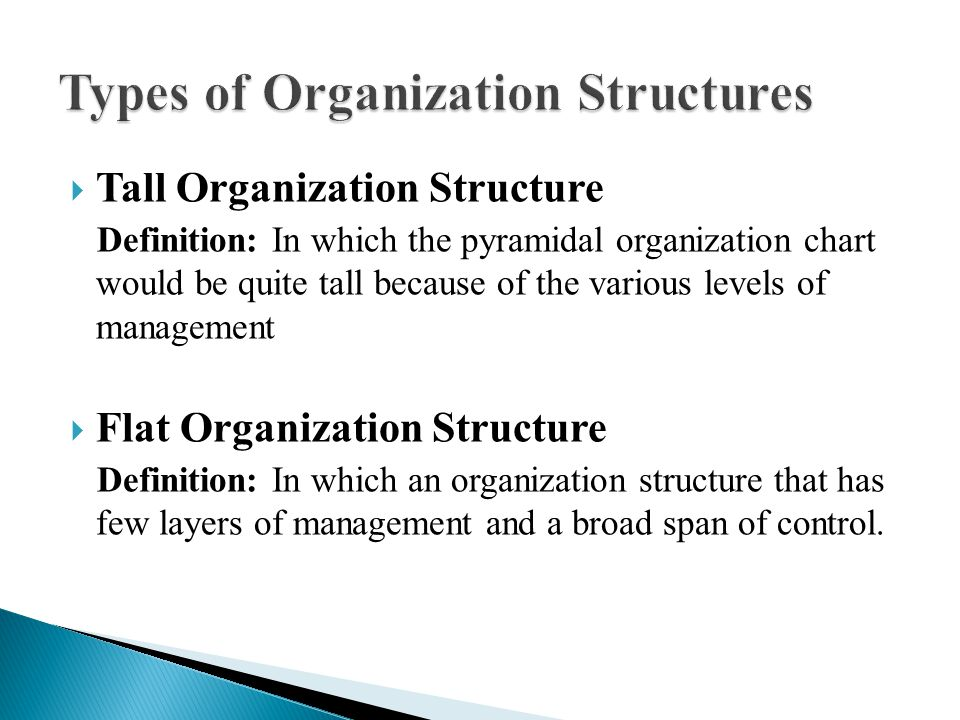 Organization Structures - ppt video online download
