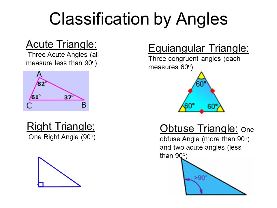Angles in a triangle worksheet show work