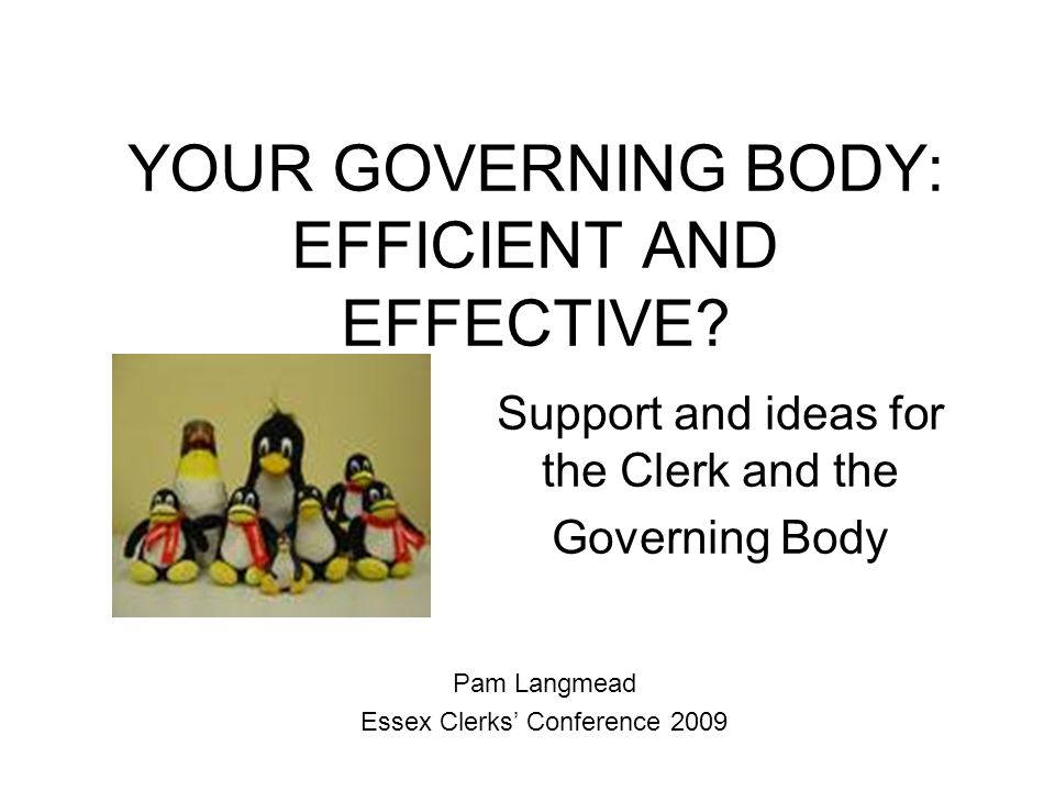 YOUR GOVERNING BODY: EFFICIENT AND EFFECTIVE