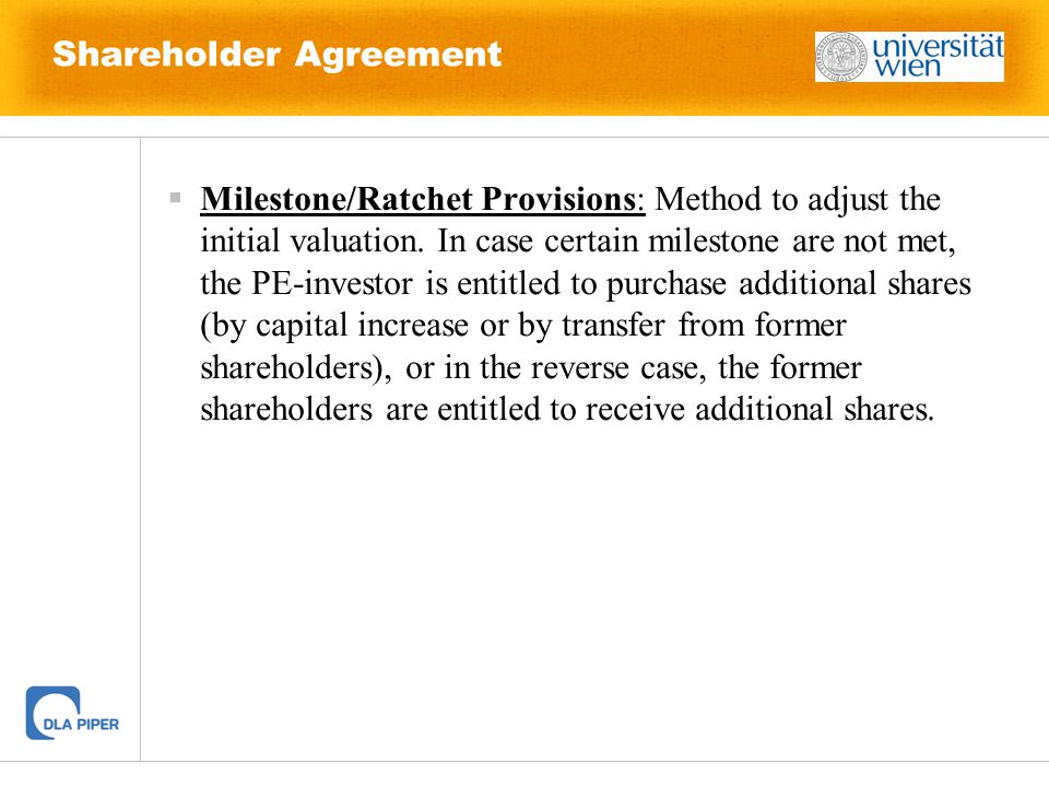 Shareholder Agreement  Main Components Of A Shareholders