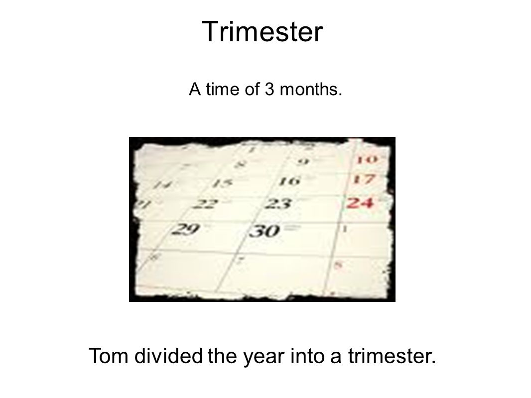 Tom divided the year into a trimester.