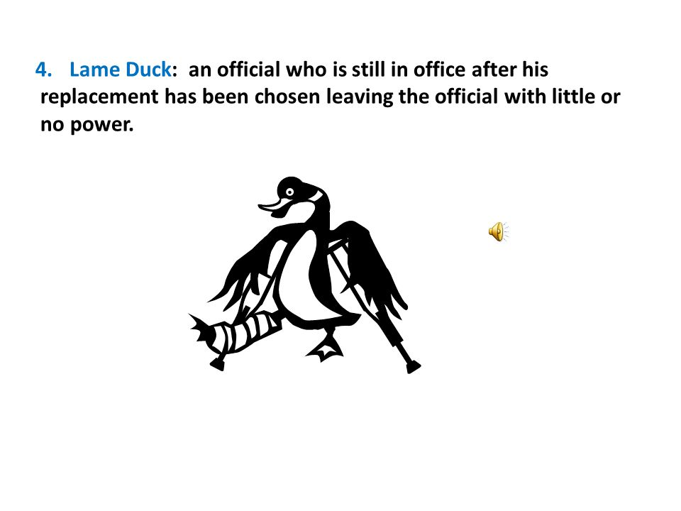 Lame Duck: an official who is still in office after his