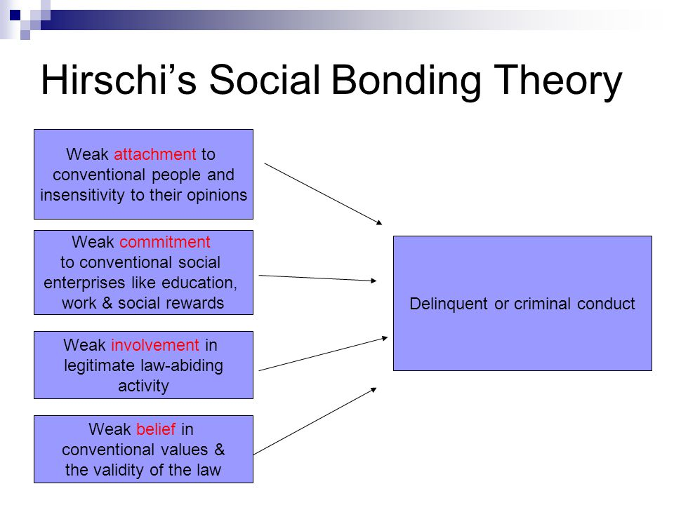 ?social bond theory essay Read this full essay on hirschi's social bonding theory  in criminology,  researchers have constantly tried to explain why people commit crime and  engage in.