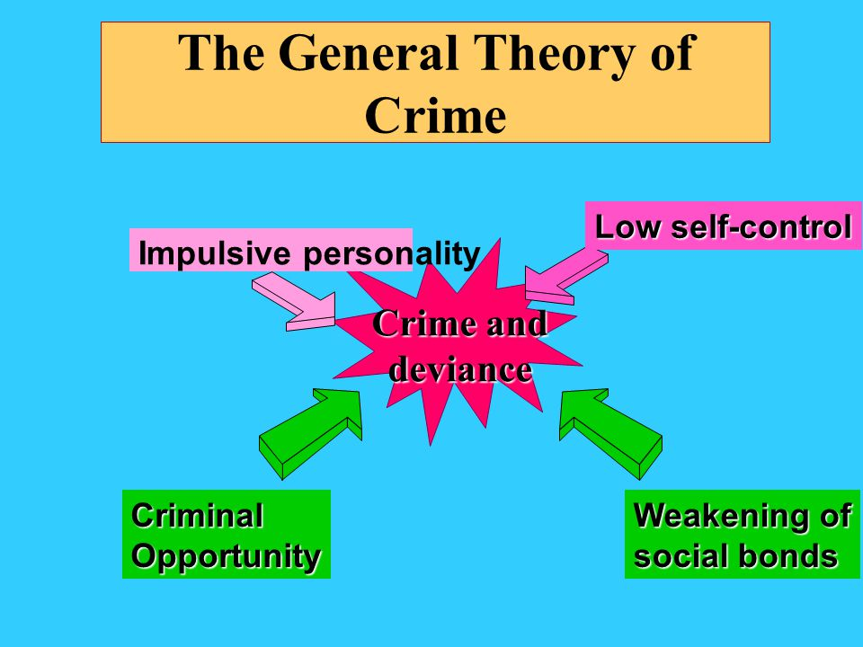 The General Theory of Crime