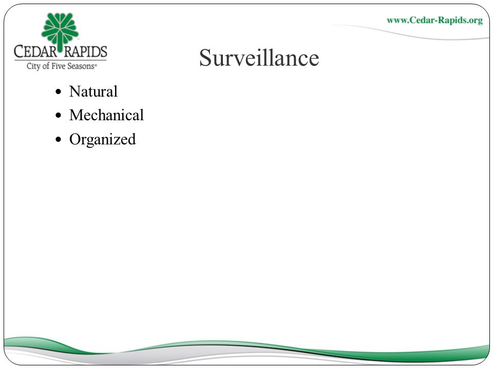 Surveillance Natural Mechanical Organized