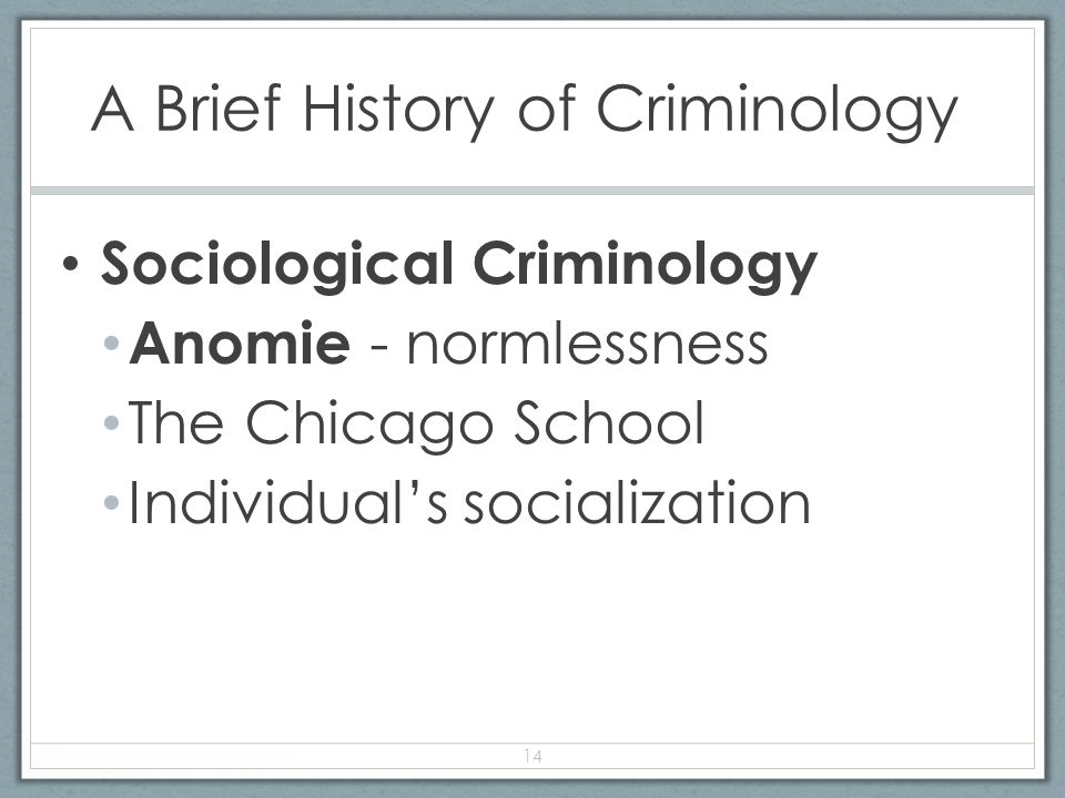 a sociological perspective on criminality Sociobiological versus sociological views of human nature 4 evolutionary foundations and transformations of human groups and societies  sociobiology and sociology.
