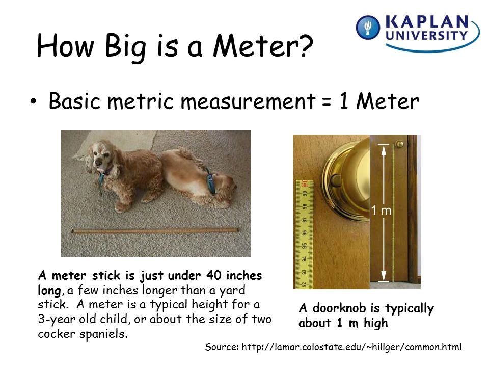 How Long Is A Meter : Welcome to survey of mathematics ppt video online download