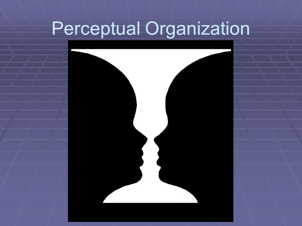 "organizing perception In psychology and cognitive sciences, social perception is the process of acquiring, interpreting, selecting and organizing sensory information in interpersonal and social environments the word perception comes from the latin capere, meaning ""to take"", the prefix per-meaning ""completely."