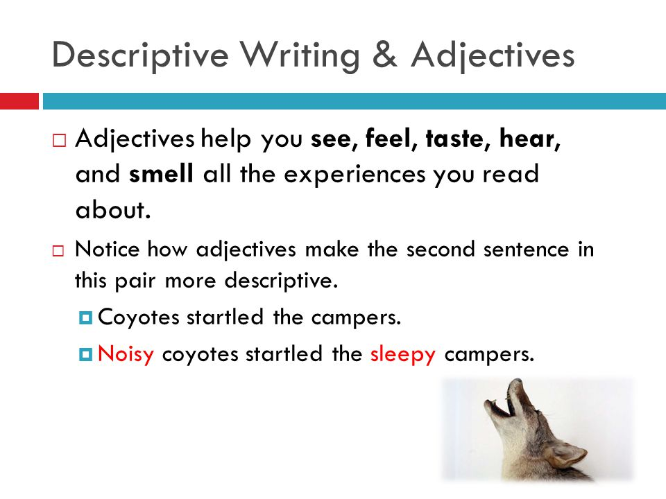Write my essay of descriptive
