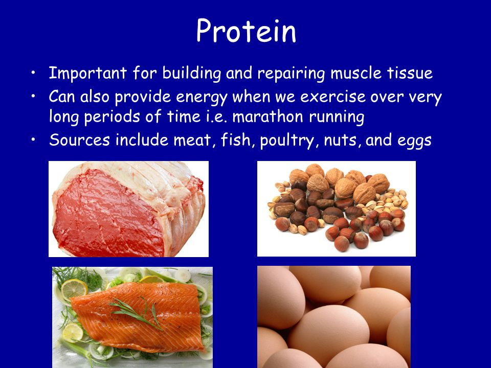 Protein Important for building and repairing muscle tissue