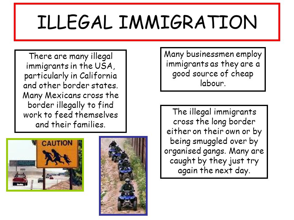 is illegal immigration beneficial to the Olsen, who said the national debate around illegal immigration has taken on a tone that's too strident, .