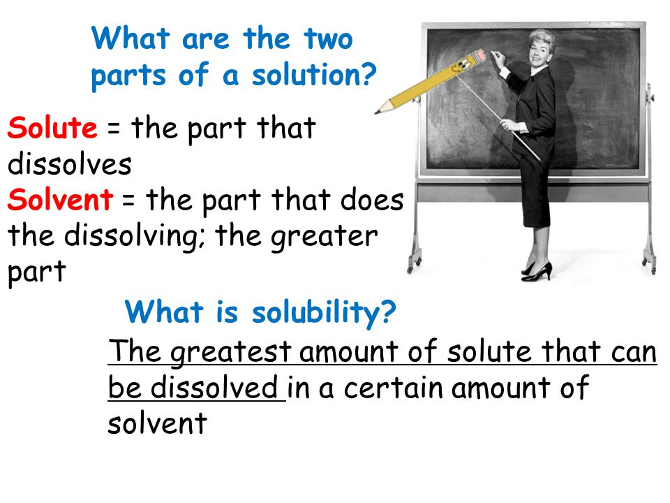 What are the two parts of a solution