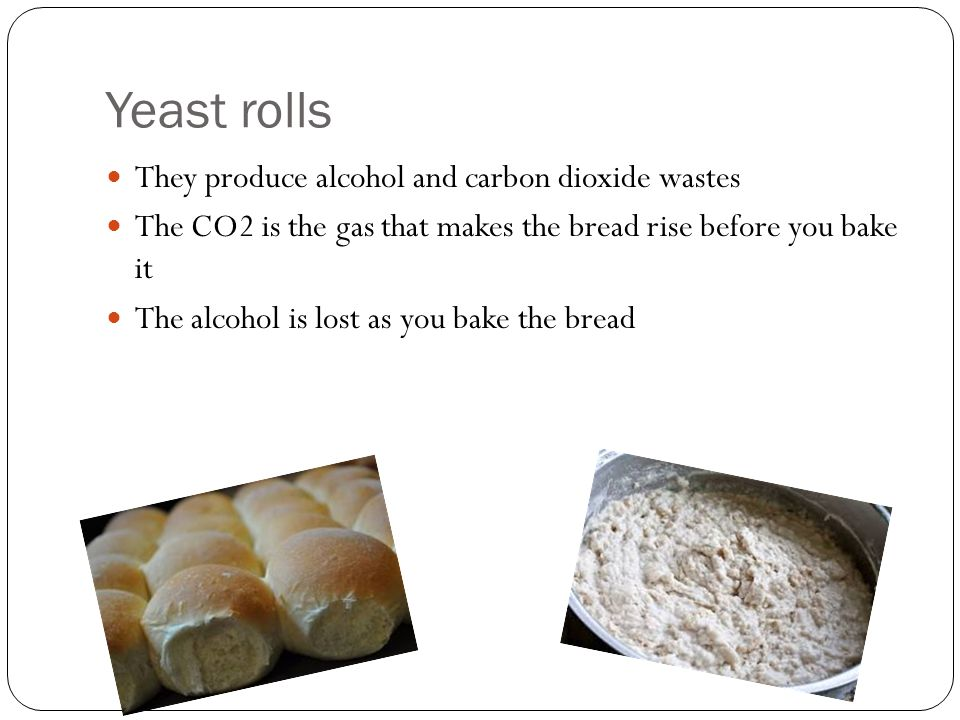 Yeast rolls They produce alcohol and carbon dioxide wastes