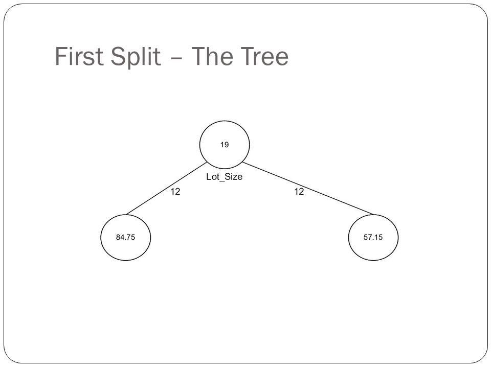 First Split – The Tree