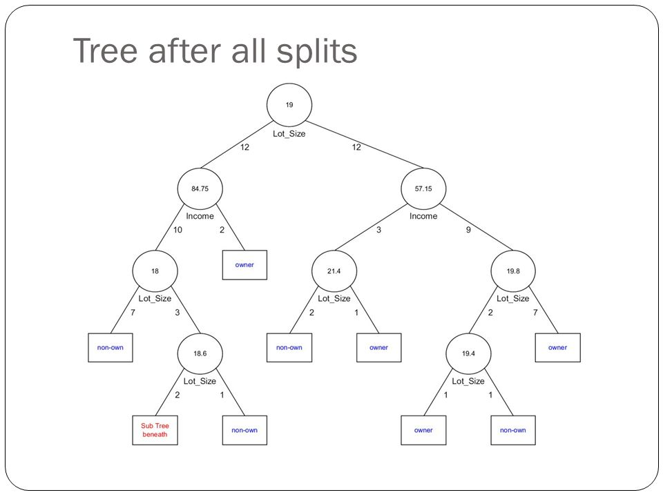 Tree after all splits