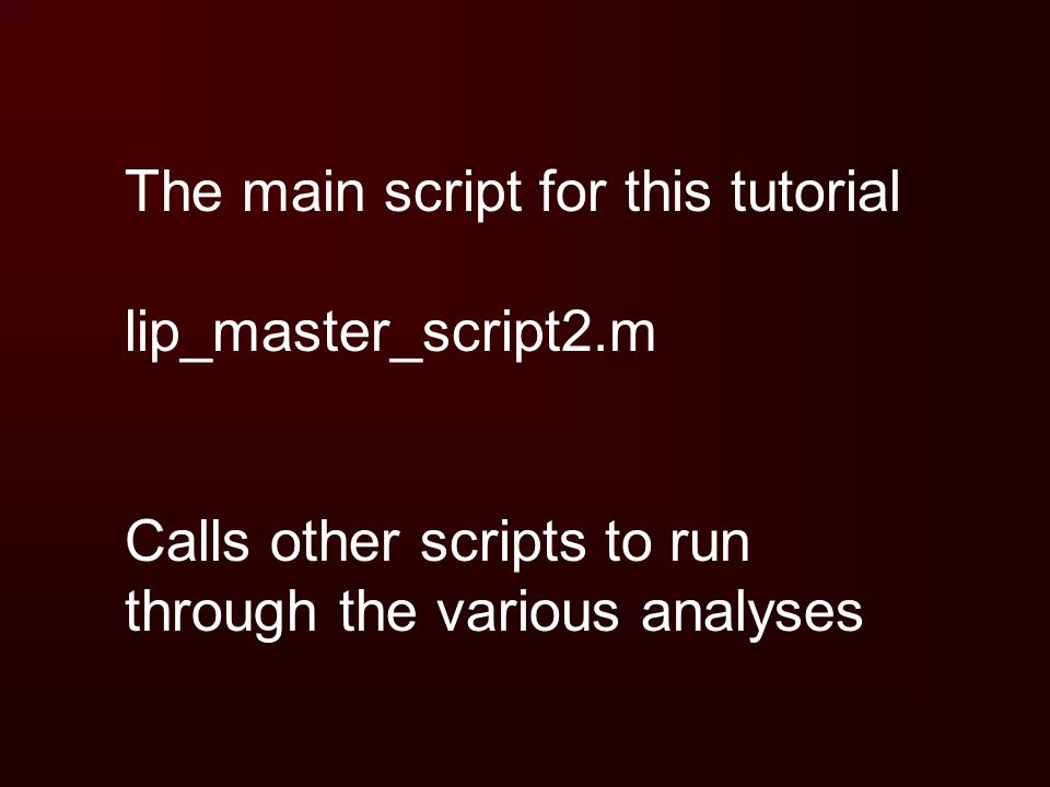 The main script for this tutorial lip_master_script2.m