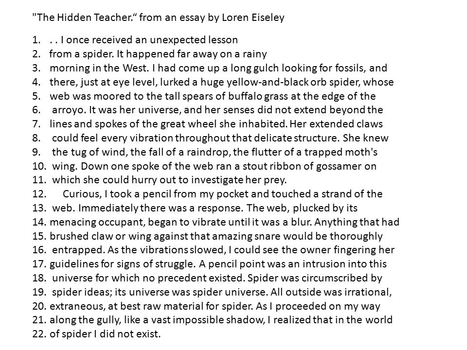 hidden lessons and essay Teaching hidden figures the hidden figures lesson plan contains a variety of teaching materials that cater to all learning styles inside you'll find 30 daily lessons, 20 fun activities, 180 multiple choice questions, 60 short essay questions, 20 essay questions, quizzes/homework assignments, tests, and more.