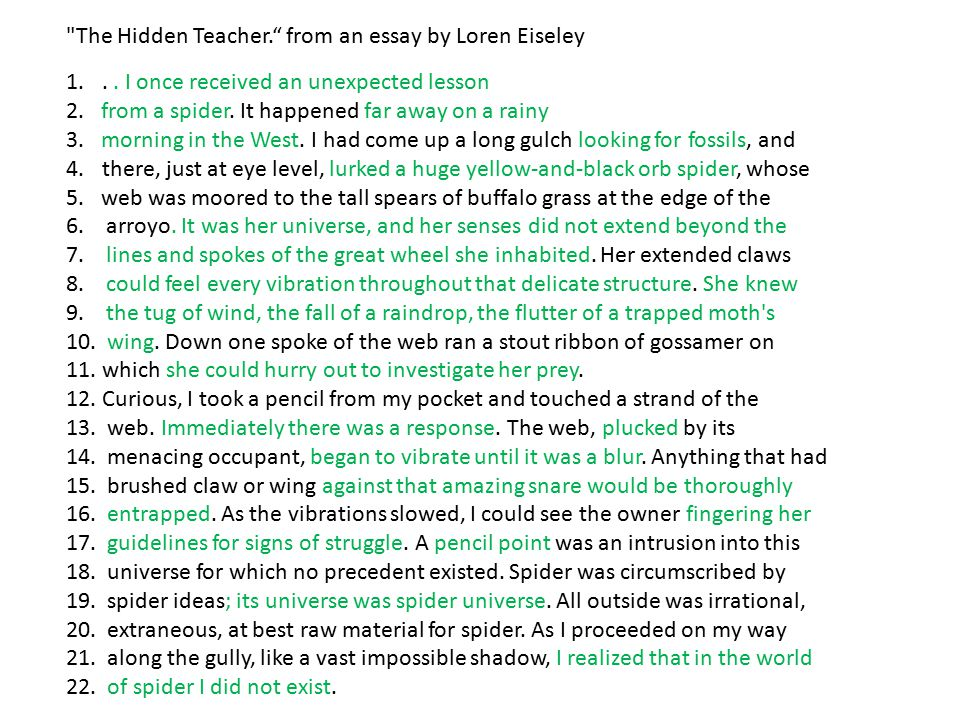 eiseley essay Nature writers, loren eiseley was a widely admired practitioner of cre  essay in this collection) ofthese monographs, only two remain in print.