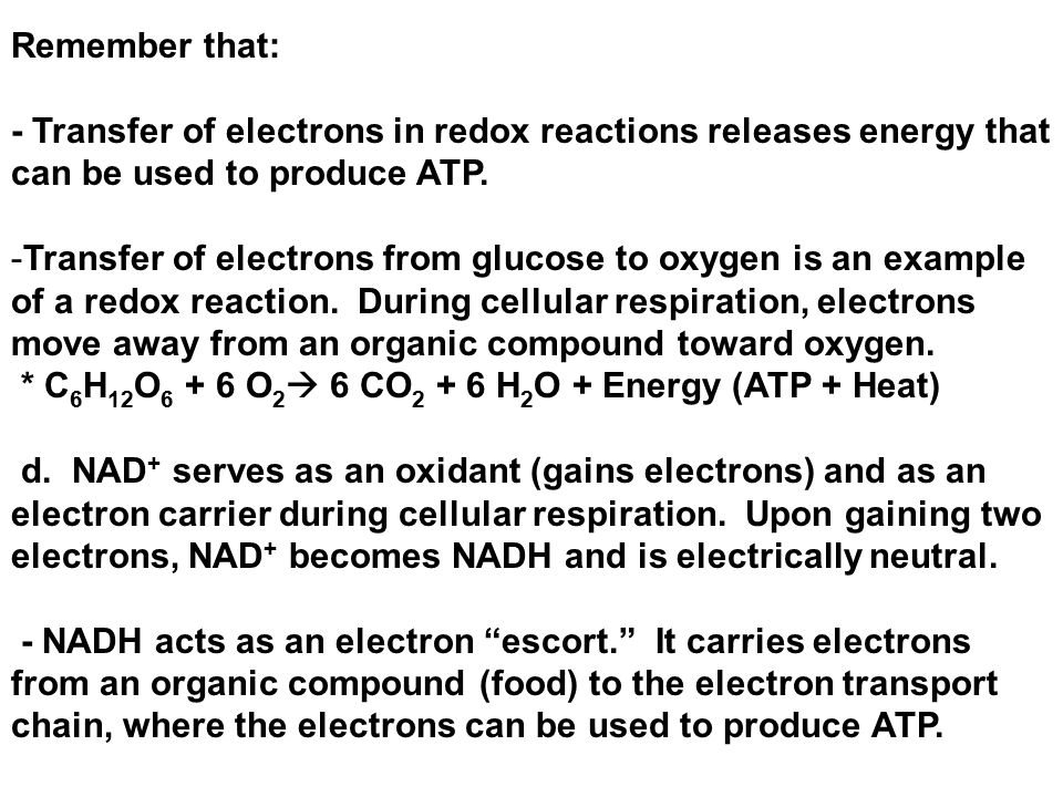 Cellular Respiration: Harvesting Chemical Energy - ppt download