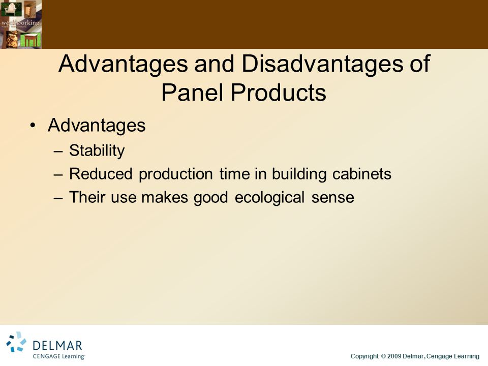 Advantages and Disadvantages of Panel Products