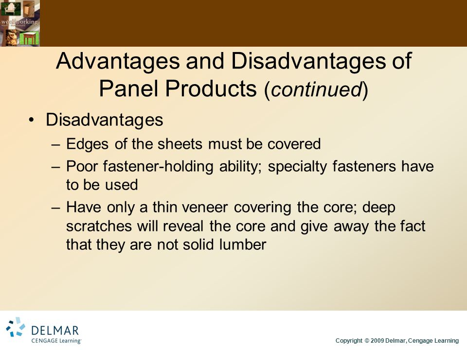 Advantages and Disadvantages of Panel Products (continued)