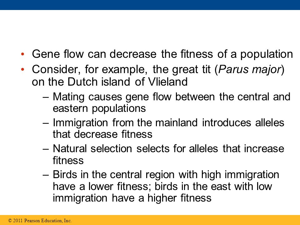 Gene flow can decrease the fitness of a population