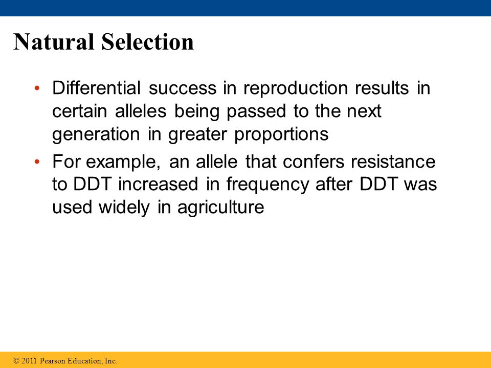 Natural Selection Differential success in reproduction results in certain alleles being passed to the next generation in greater proportions.