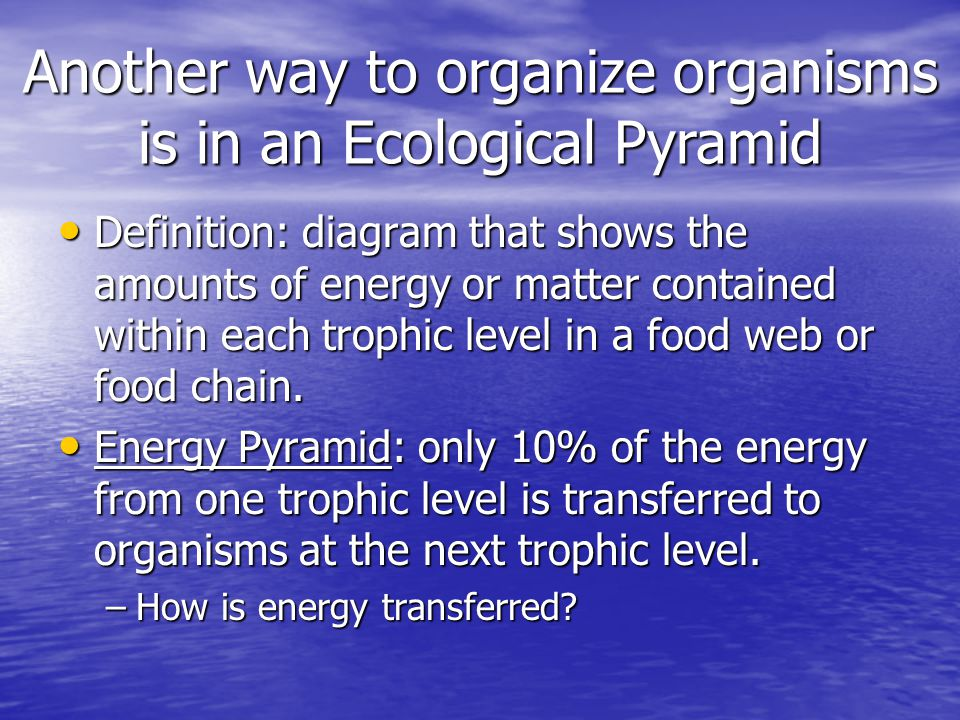 Another way to organize organisms is in an Ecological Pyramid