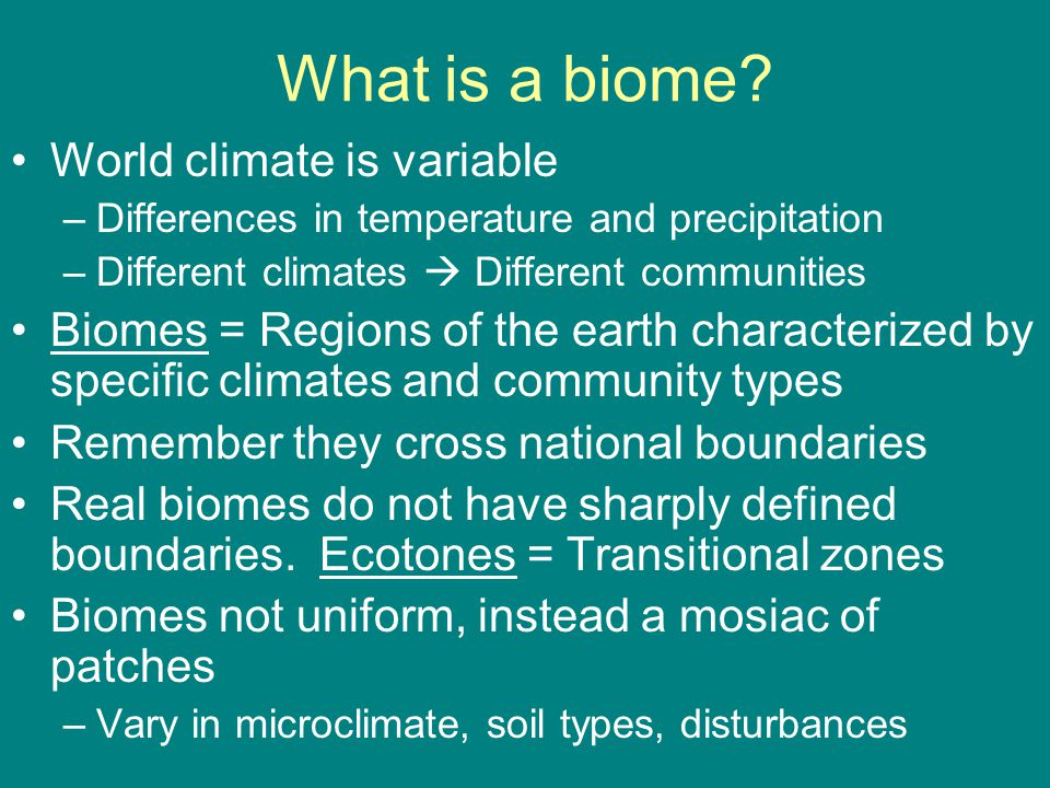 different biomes of the world essay Scientists divide the world into large natural areas called biomes desert and  rainforest biomes are two that you've probably heard of each biome is known for .