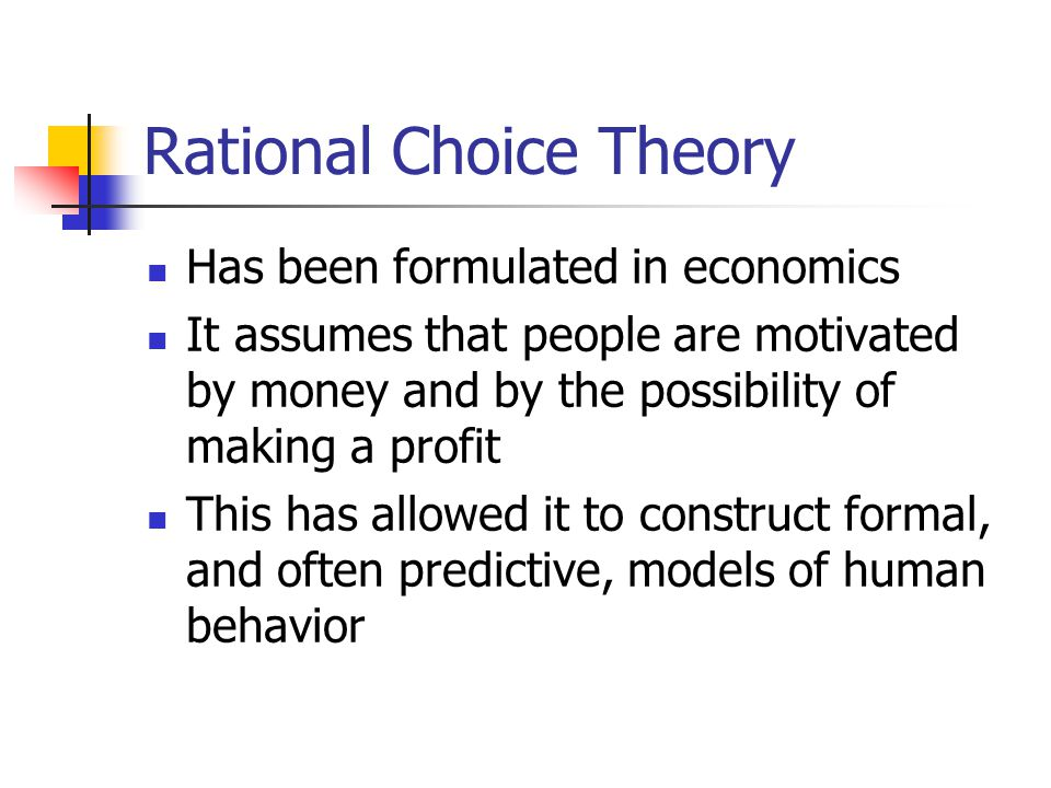 The perspective of rational choice essay