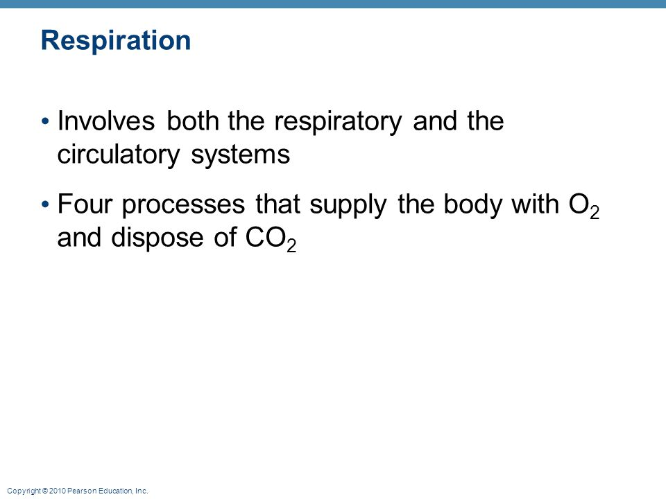 Respiration Involves both the respiratory and the circulatory systems.