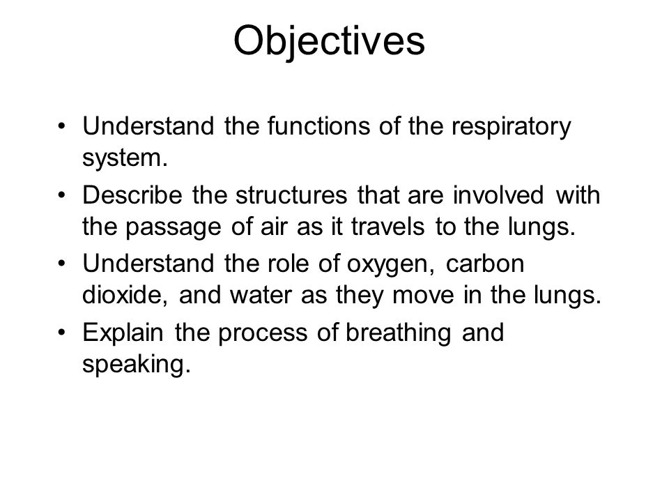 Objectives Understand the functions of the respiratory system.