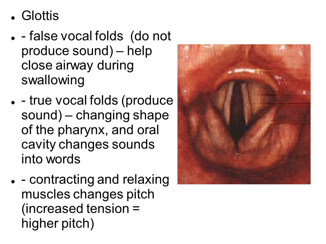 how to keep vocal cords together