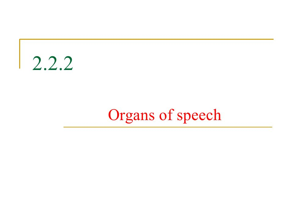 2.2.2 Organs of speech