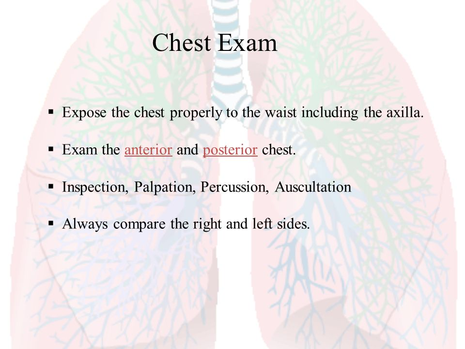 Chest Exam Expose the chest properly to the waist including the axilla. Exam the anterior and posterior chest.