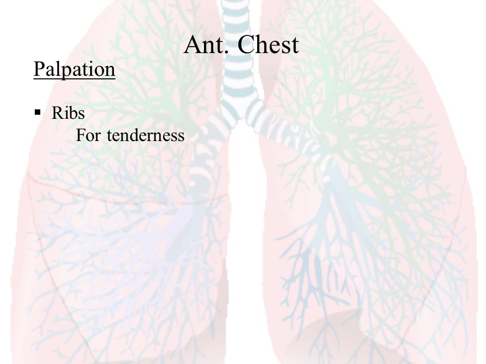 Ant. Chest Palpation Ribs For tenderness