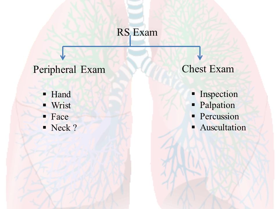 RS Exam Peripheral Exam Chest Exam Hand Inspection Wrist Palpation