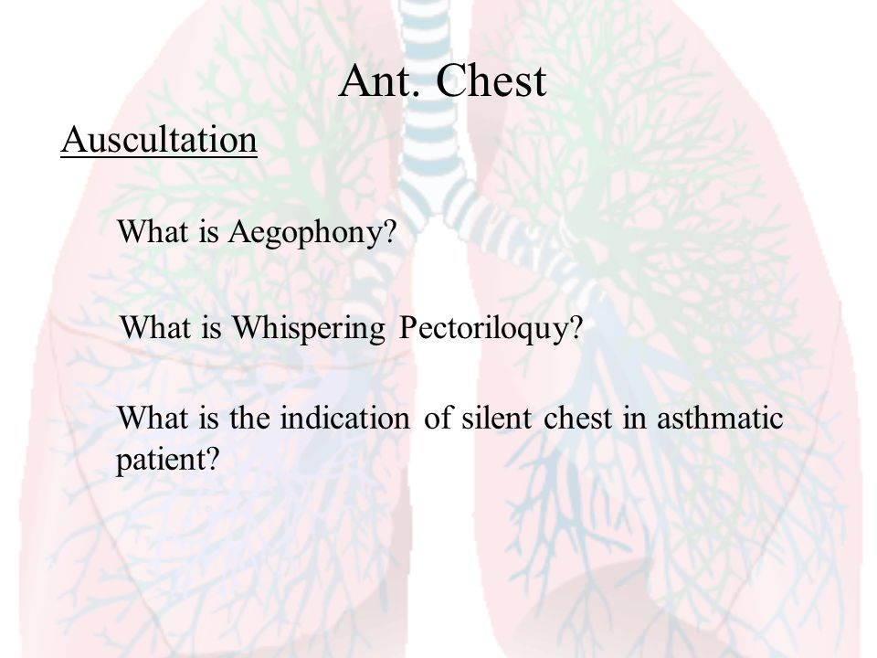 Ant. Chest Auscultation What is Aegophony