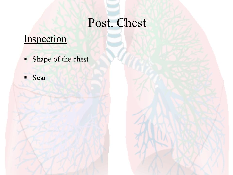 Post. Chest Inspection Shape of the chest Scar