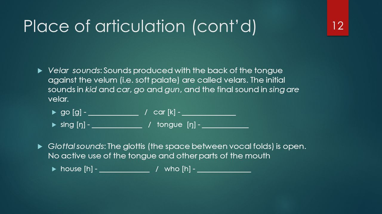 Place of articulation (cont'd)