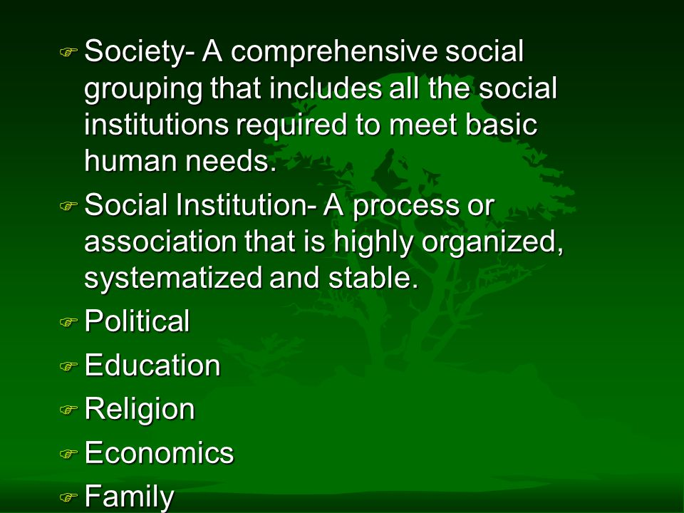 Society- A comprehensive social grouping that includes all the social institutions required to meet basic human needs.
