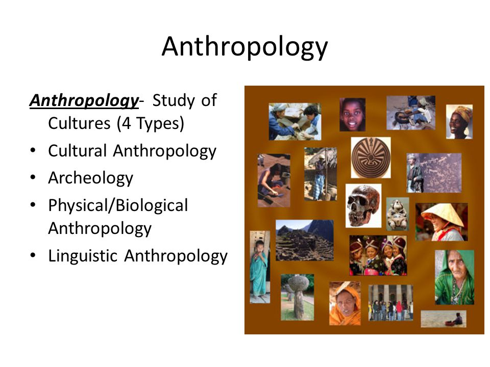 Anthropology Anthropology- Study of Cultures (4 Types)