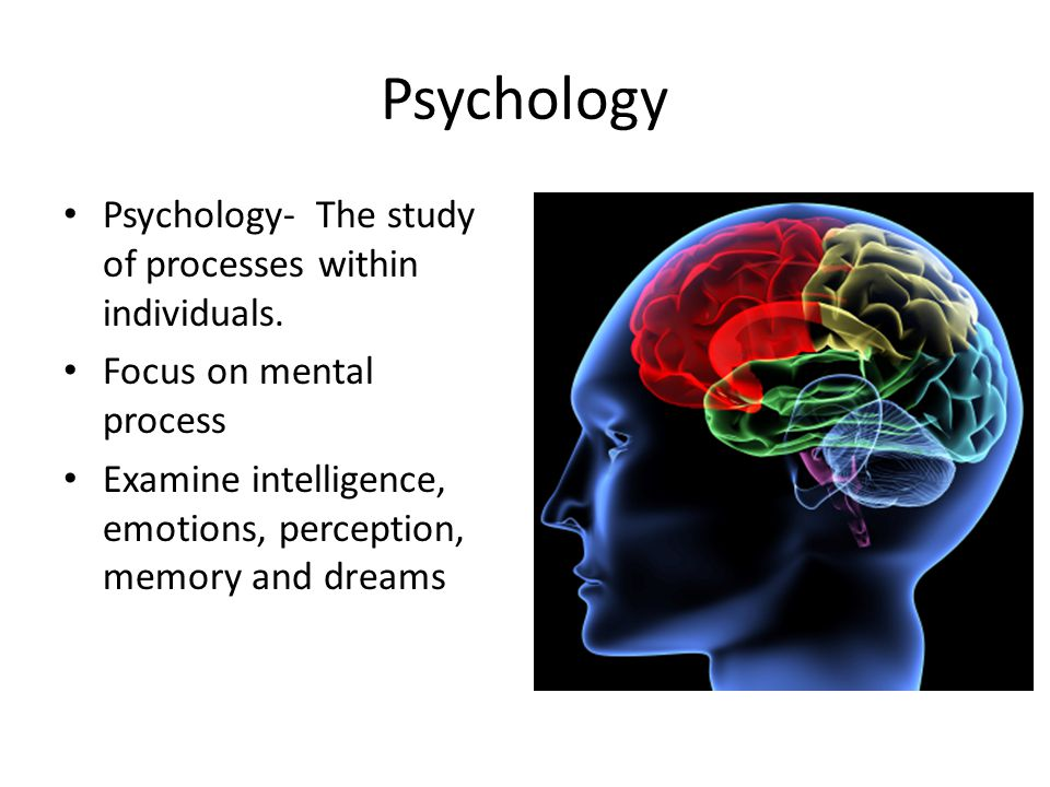 Psychology Psychology- The study of processes within individuals.