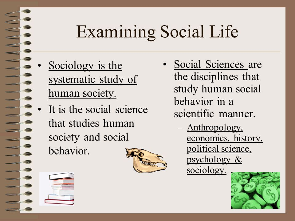 Examining Social Life Sociology is the systematic study of human society. It is the social science that studies human society and social behavior.